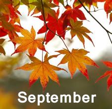 sept2014