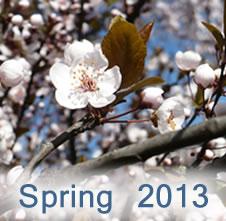 spring2013 3
